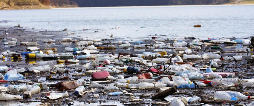 Zelena inicijativa – prelazak s plastike na karton