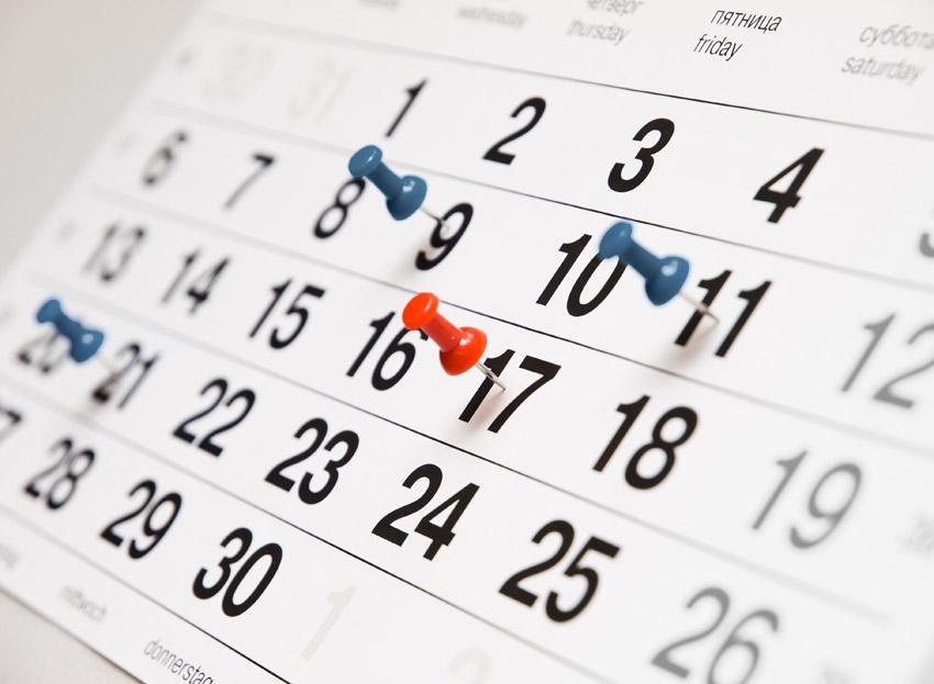 Popularnost skupih kalendara