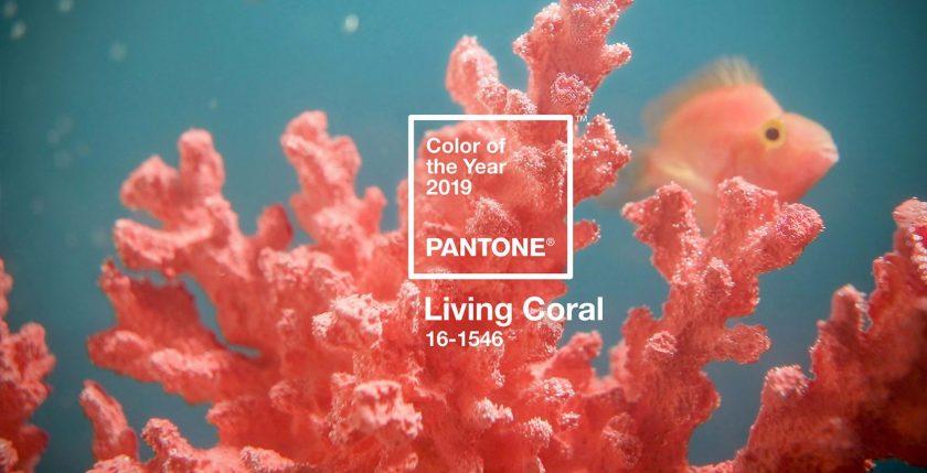 Živahna boja koralja Pantone je boja godine